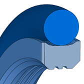 Cross section sketch Radial Seal